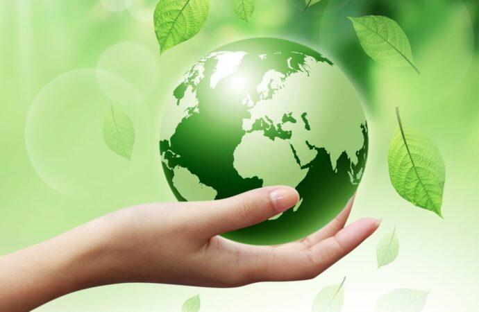 ISO-14001-Certified-iso 9001 texas
